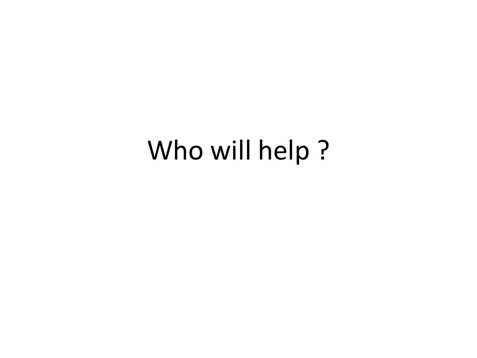Who will help ?