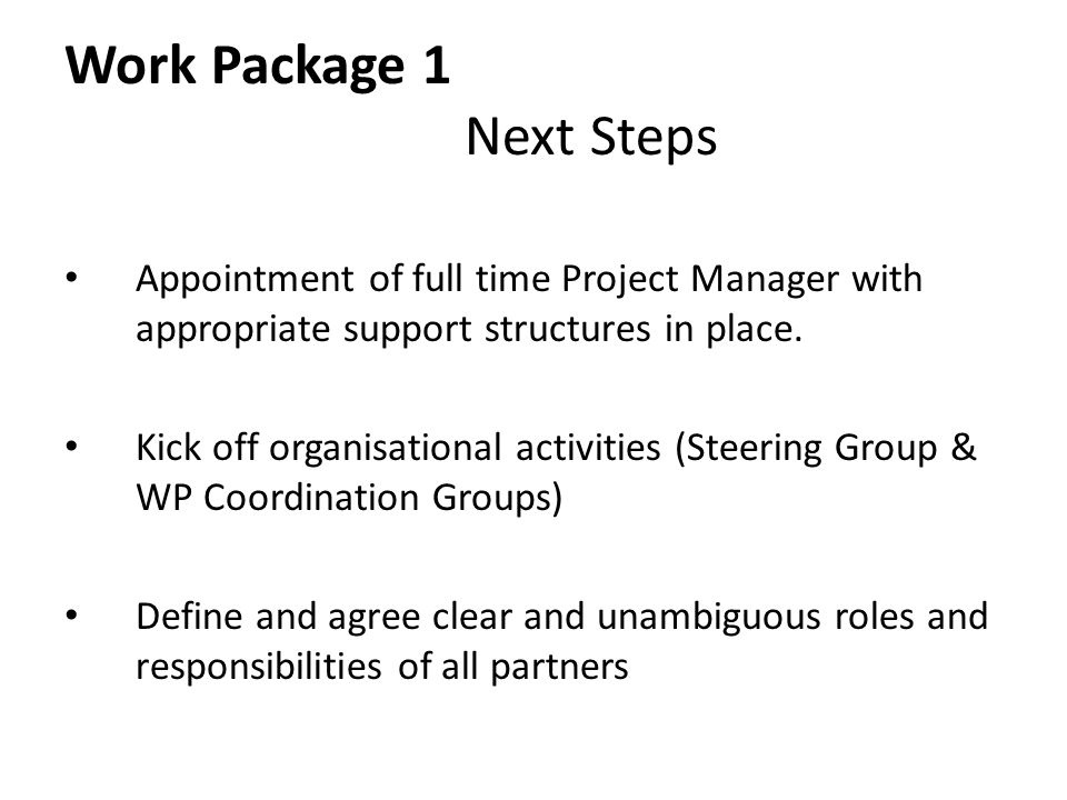 Work Package 1 Next Steps Appointment of full time Project Manager with appropriate support structures in place.