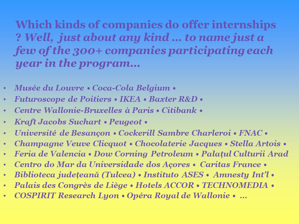 Which kinds of companies do offer internships .