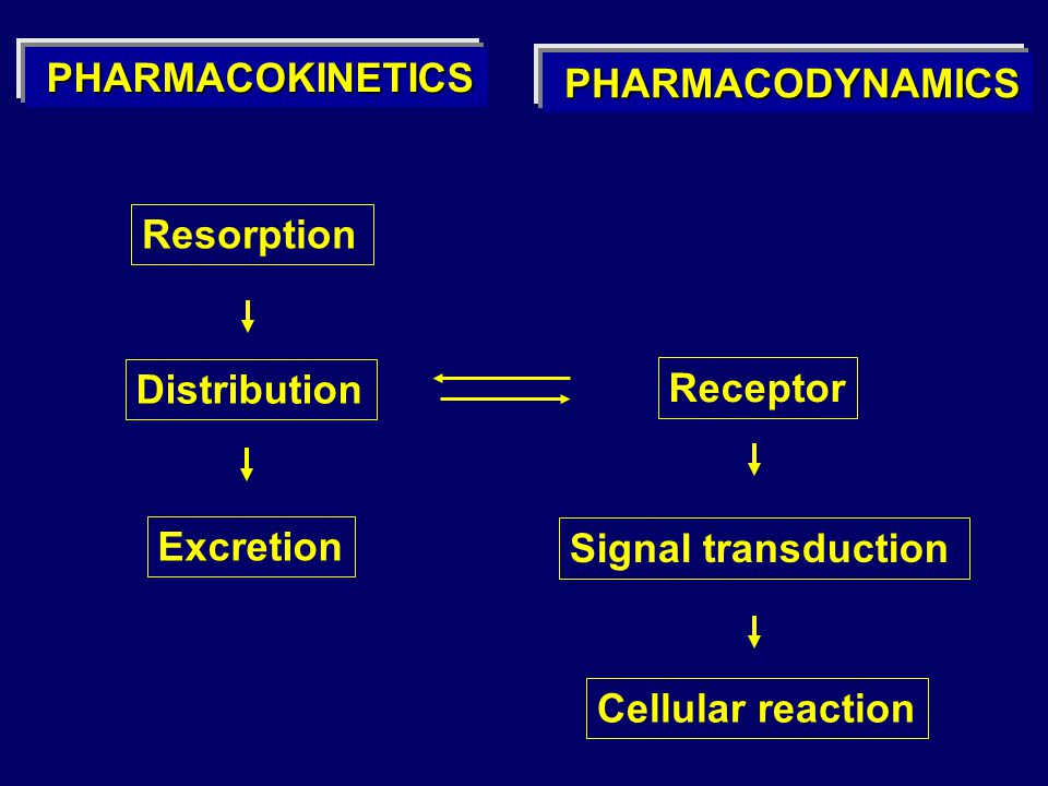 Resorption Distribution Excretion Receptor Signal transduction Cellular reaction PHARMACODYNAMICS PHARMACODYNAMICS PHARMACOKINETICS PHARMACOKINETICS