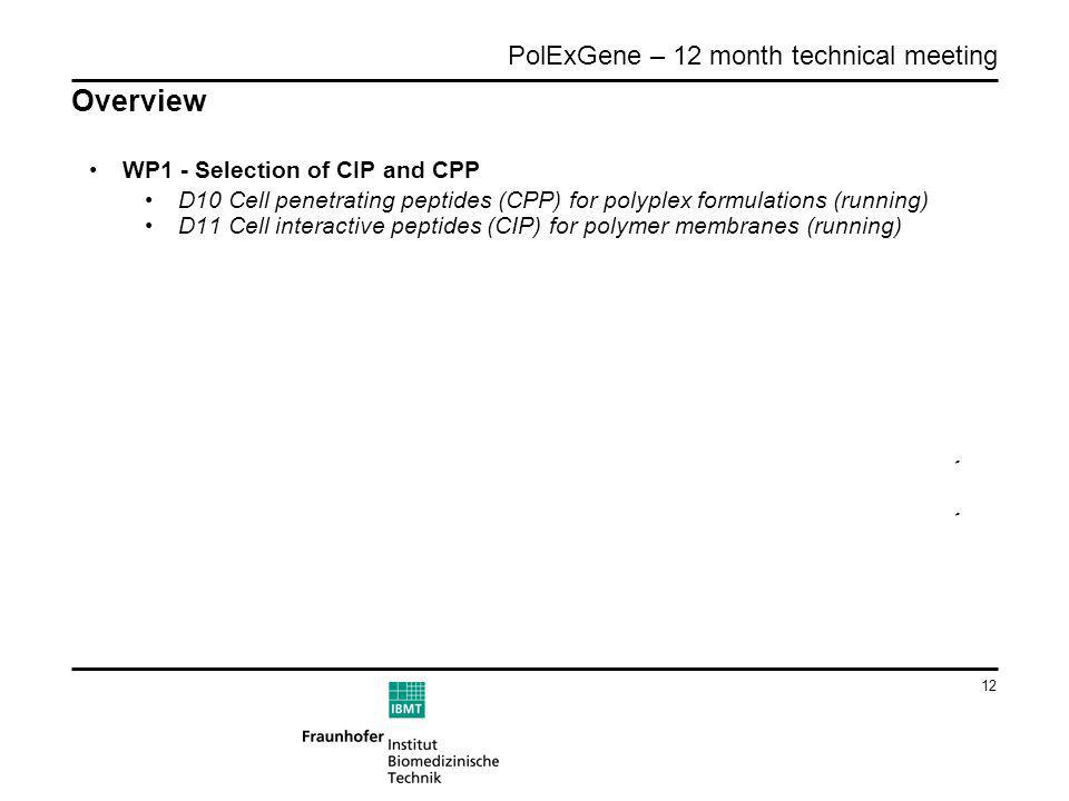 12 PolExGene – 12 month technical meeting Overview WP1 - Selection of CIP and CPP D10 Cell penetrating peptides (CPP) for polyplex formulations (runni
