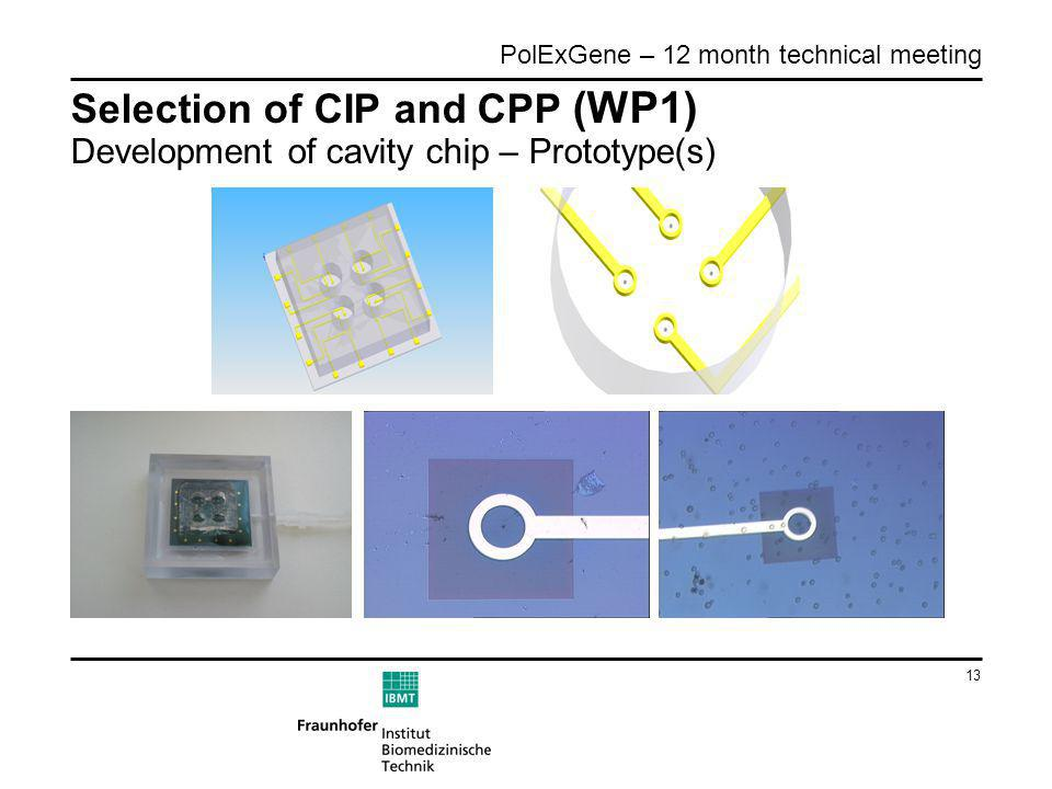 13 PolExGene – 12 month technical meeting Selection of CIP and CPP (WP1) Development of cavity chip – Prototype(s)