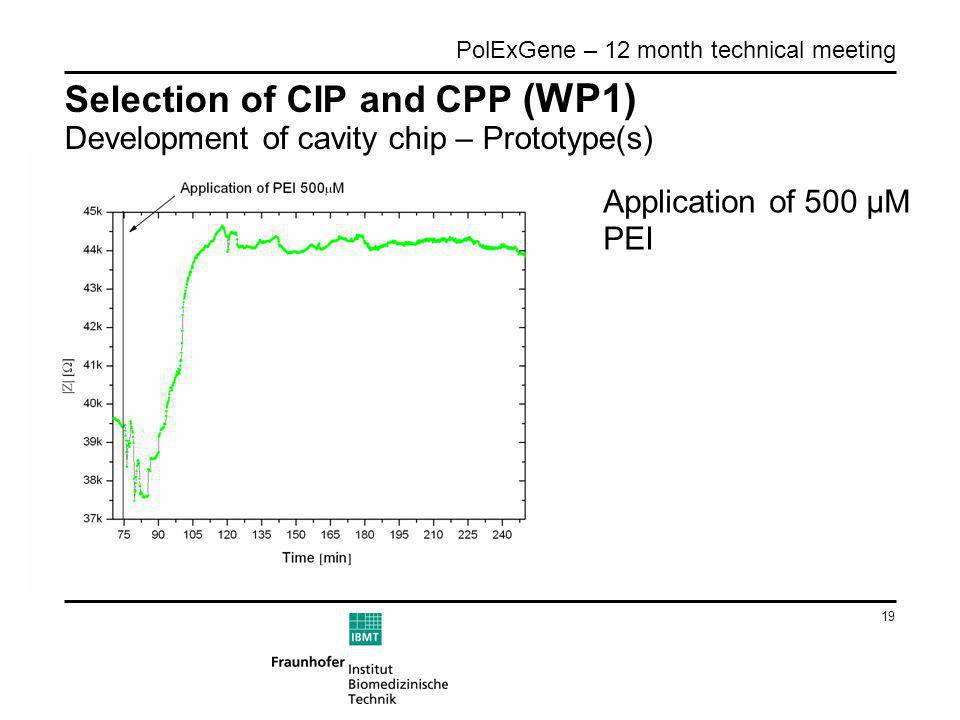 19 PolExGene – 12 month technical meeting Selection of CIP and CPP (WP1) Development of cavity chip – Prototype(s) Application of 500 µM PEI