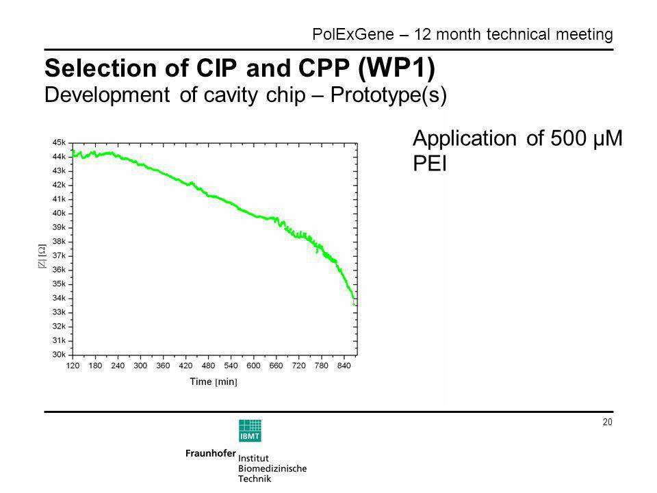 20 PolExGene – 12 month technical meeting Selection of CIP and CPP (WP1) Development of cavity chip – Prototype(s) Application of 500 µM PEI