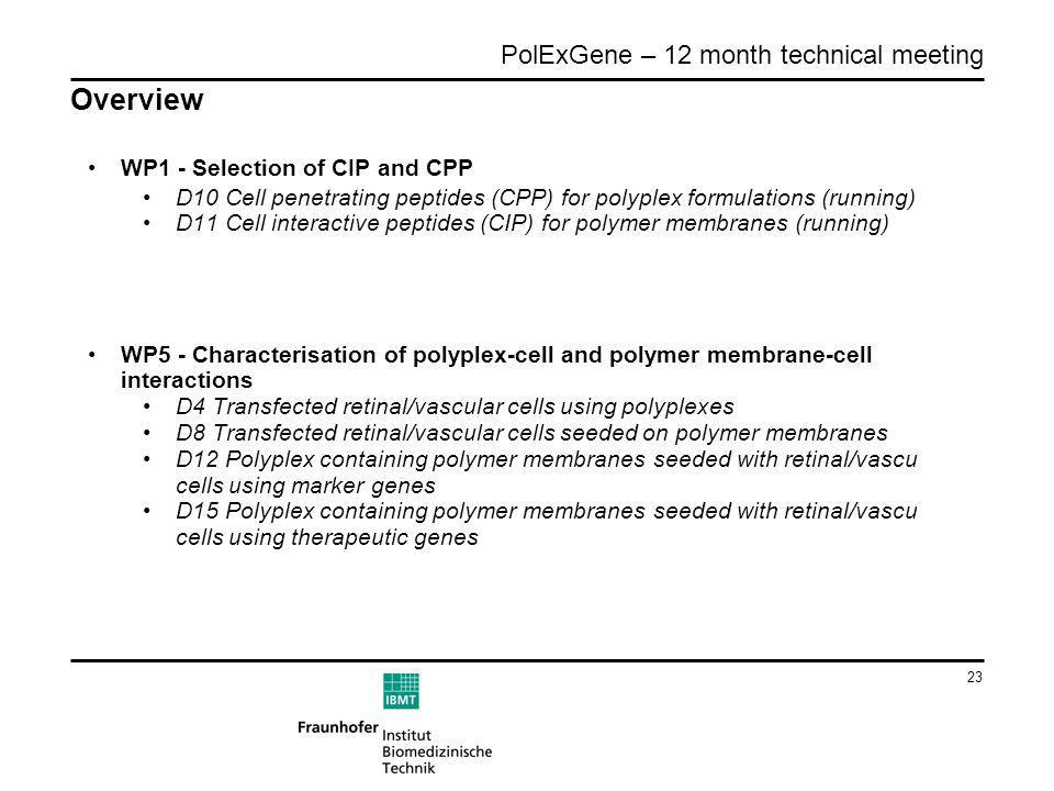 23 PolExGene – 12 month technical meeting Overview WP1 - Selection of CIP and CPP D10 Cell penetrating peptides (CPP) for polyplex formulations (runni