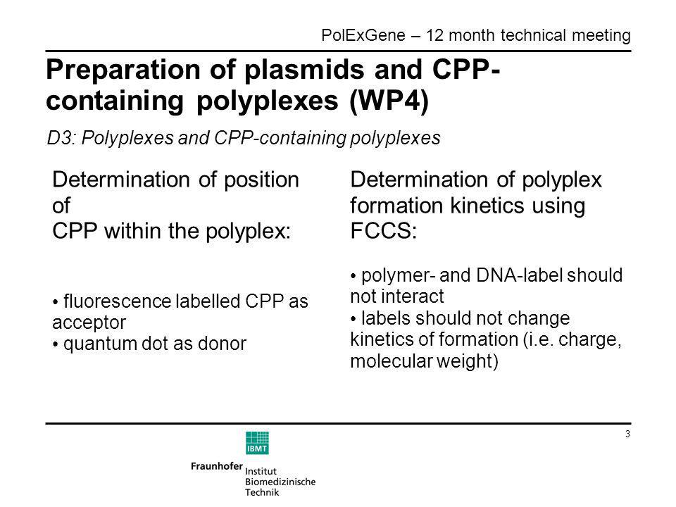3 PolExGene – 12 month technical meeting Preparation of plasmids and CPP- containing polyplexes (WP4) Determination of position of CPP within the polyplex: fluorescence labelled CPP as acceptor quantum dot as donor D3: Polyplexes and CPP-containing polyplexes Determination of polyplex formation kinetics using FCCS: polymer- and DNA-label should not interact labels should not change kinetics of formation (i.e.