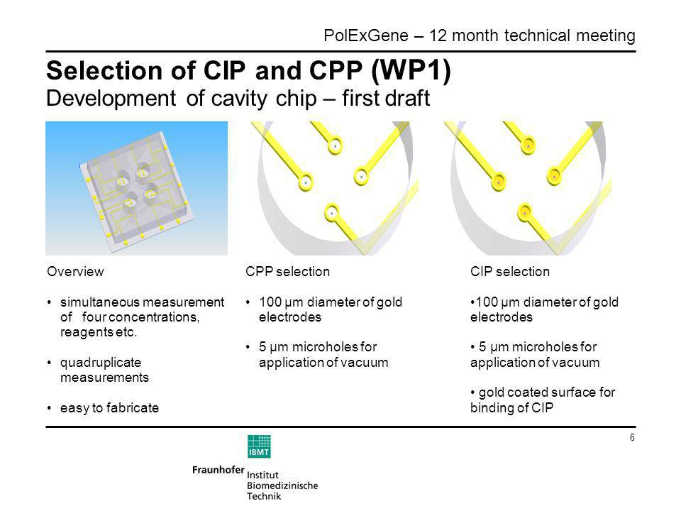 6 PolExGene – 12 month technical meeting Selection of CIP and CPP (WP1) Development of cavity chip – first draft Overview simultaneous measurement of four concentrations, reagents etc.