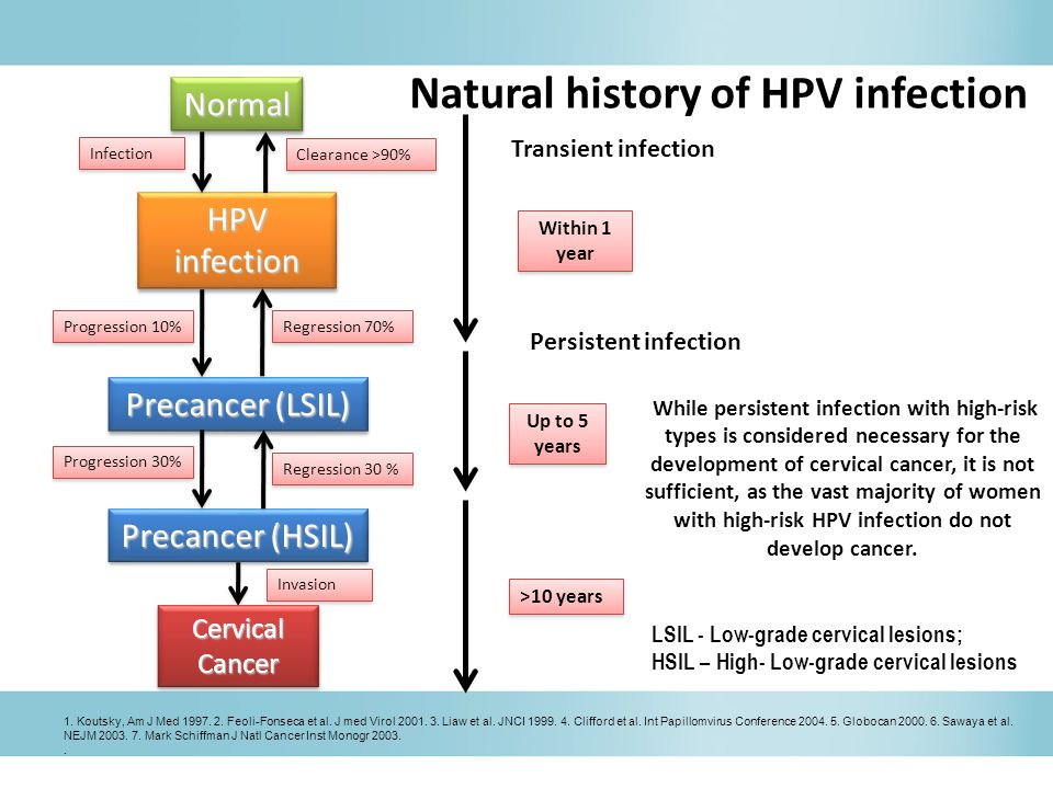 Within 1 year >10 years Natural history of HPV infection While persistent infection with high-risk types is considered necessary for the development of cervical cancer, it is not sufficient, as the vast majority of women with high-risk HPV infection do not develop cancer.