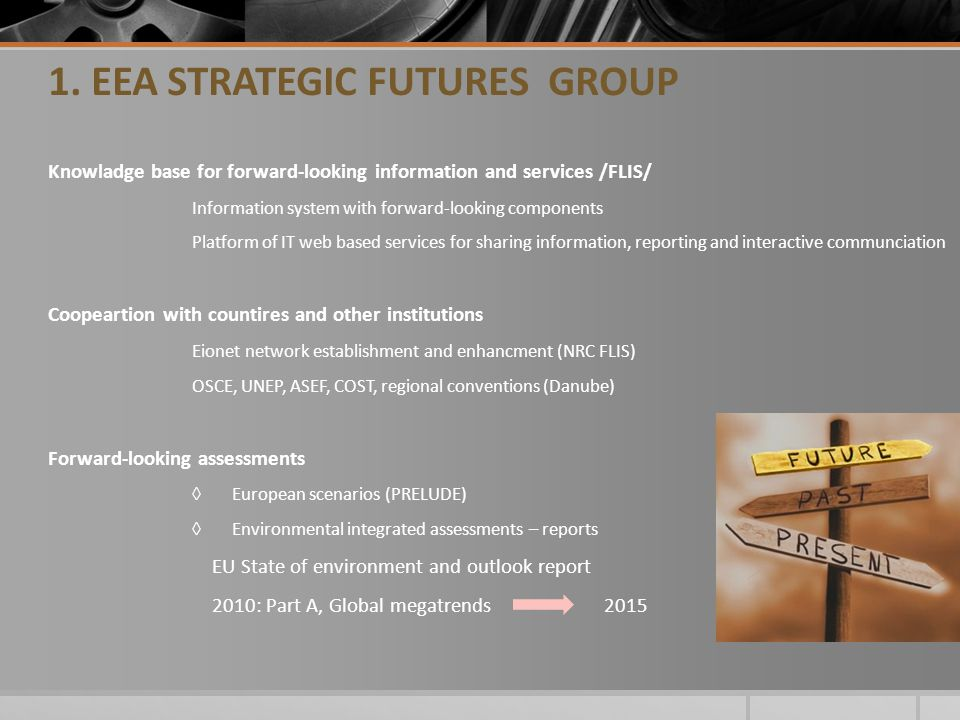 1. EEA STRATEGIC FUTURES GROUP Knowladge base for forward-looking information and services /FLIS/ Information system with forward-looking components P