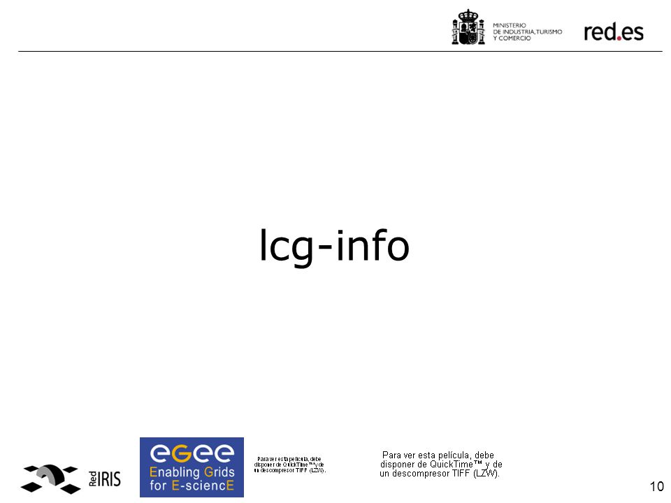 10 lcg-info