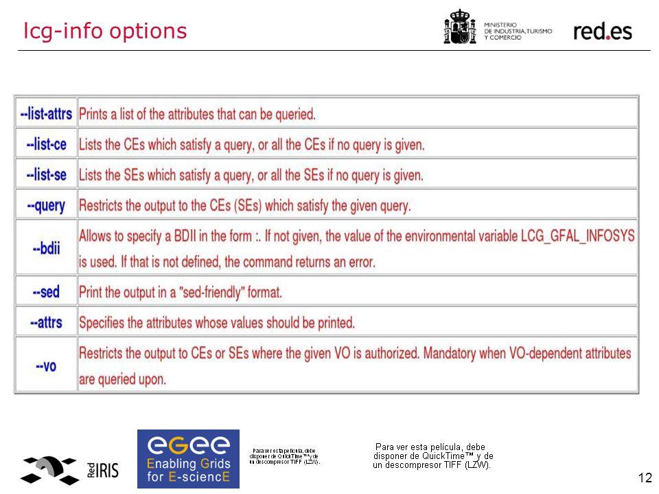 12 lcg-info options
