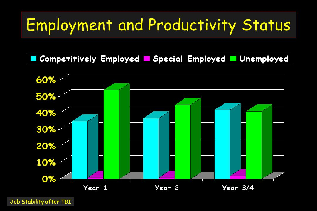 Employment and Productivity Status Job Stability after TBI