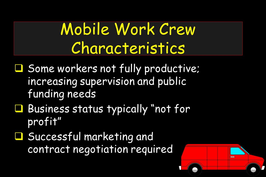  Some workers not fully productive; increasing supervision and public funding needs  Business status typically not for profit  Successful marketing and contract negotiation required