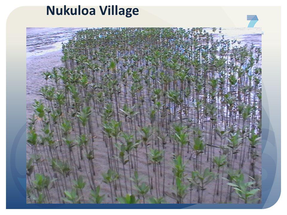 Nukuloa Village