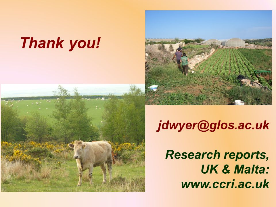 Thank you! jdwyer@glos.ac.uk Research reports, UK & Malta: www.ccri.ac.uk