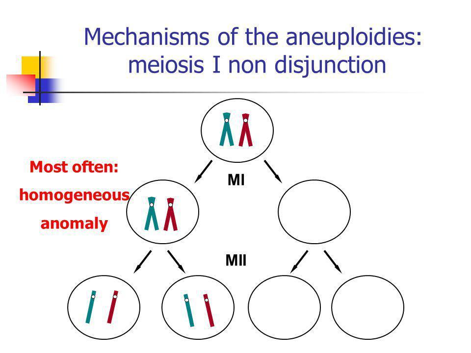 MI MII Mechanisms of the aneuploidies: meiosis I non disjunction Most often: homogeneous anomaly