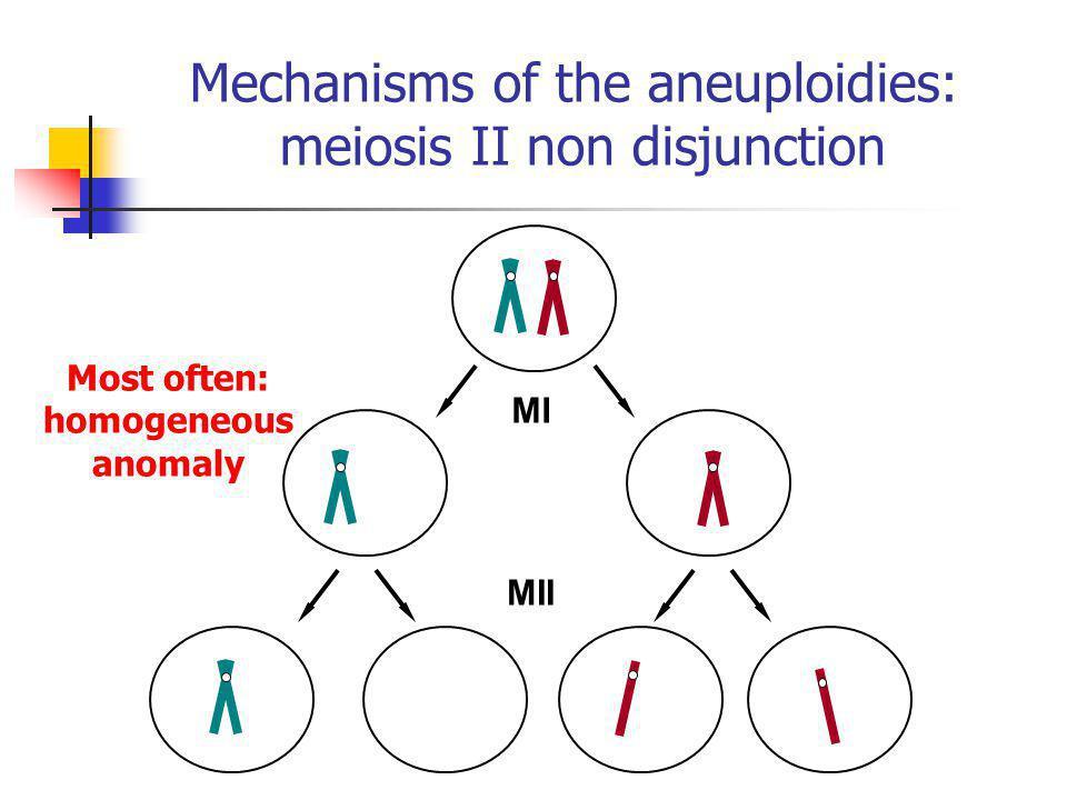 MI MII Mechanisms of the aneuploidies: meiosis II non disjunction Most often: homogeneous anomaly