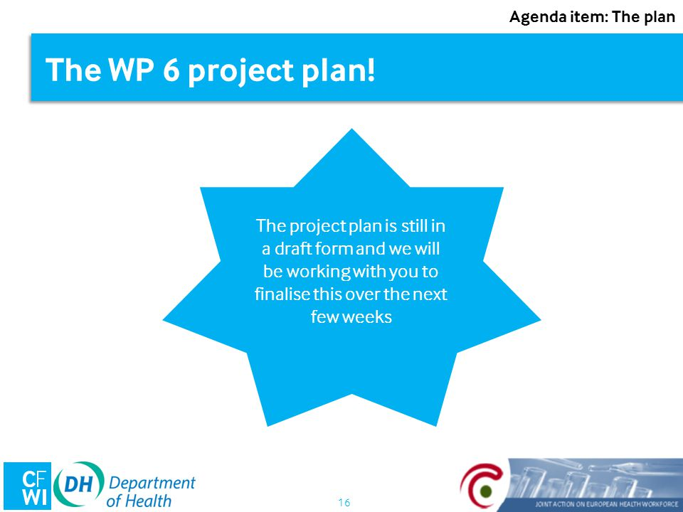 16 The WP 6 project plan.