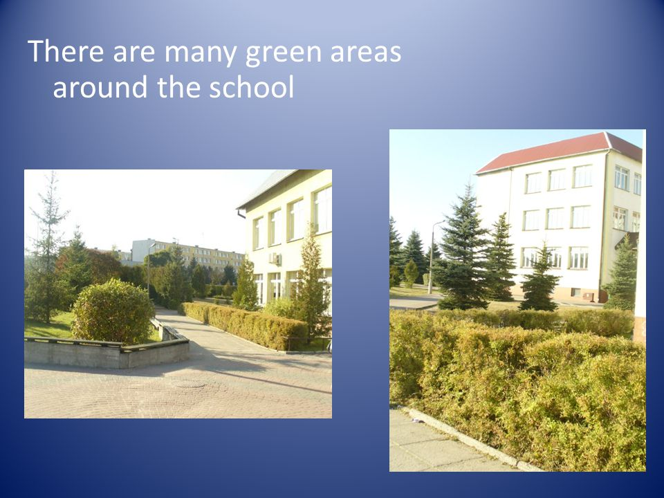 There are many green areas around the school