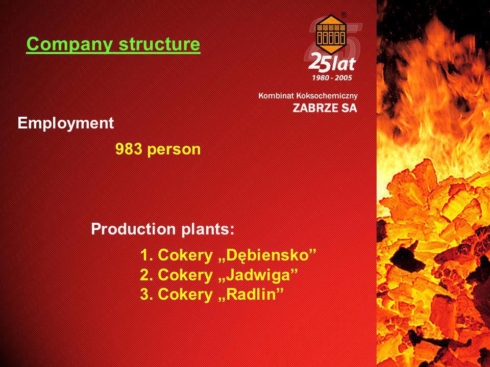 "Employment 983 person Production plants: 1. Cokery ""Dębiensko 2."