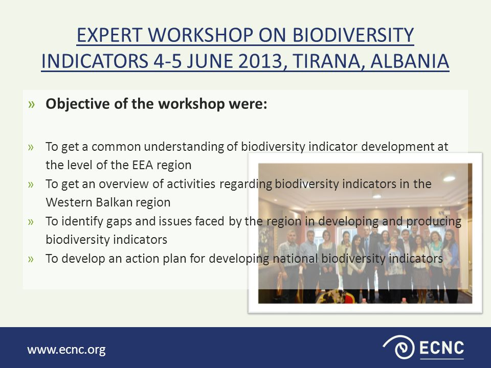 www.ecnc.org PRESENTED CONTEXTUAL INFORMATION: »Contextual information:  About the project;  EEA work on biodiversity indicators  UNEP work on biodiversity indicators;  Progress in national level work on biodiversity indicators (Albania, Macedonia, Serbia)  Country overview report  Indicator fact sheet – introduction and example  Setting the SMART objectives and action planning;