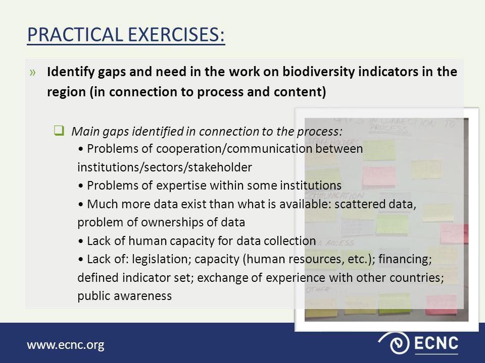 www.ecnc.org  Main gaps identified in connection to the contents: No national monitoring system or monitoring system not efficient enough Data not well balanced between the countries Some data are specific at country level and not relevant for European level Data not equally distributed through the whole country (protected areas well covered vs.