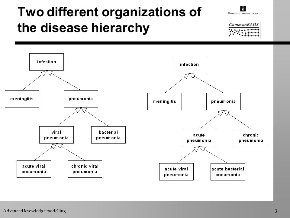 Advanced knowledge modelling 3 Two different organizations of the disease hierarchy
