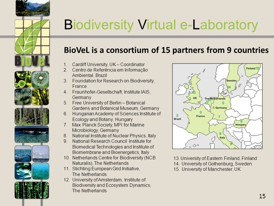 15 Biodiversity Virtual e-Laboratory BioVeL is a consortium of 15 partners from 9 countries 1.Cardiff University, UK – Coordinator 2.Centro de Referência em Informação Ambiental, Brazil 3.Foundation for Research on Biodiversity, France 4.Fraunhofer-Gesellschaft, Institute IAIS, Germany 5.Free University of Berlin – Botanical Gardens and Botanical Museum, Germany 6.Hungarian Academy of Sciences Institute of Ecology and Botany, Hungary 7.Max Planck Society, MPI for Marine Microbiology, Germany 8.National Institute of Nuclear Physics, Italy 9.National Research Council: Institute for Biomedical Technologies and Institute of Biomembrane and Bioenergetics, Italy 10.Netherlands Centre for Biodiversity (NCB Naturalis), The Netherlands 11.Stichting European Grid Initiative, The Netherlands 12.University of Amsterdam, Institute of Biodiversity and Ecosystem Dynamics, The Netherlands 13.University of Eastern Finland, Finland  University of Gothenburg, Sweden  University of Manchester, UK
