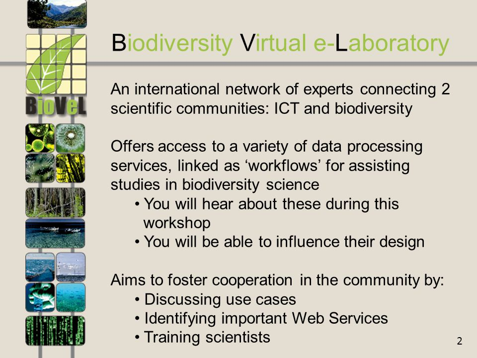 2 Biodiversity Virtual e-Laboratory An international network of experts connecting 2 scientific communities: ICT and biodiversity Offers access to a variety of data processing services, linked as 'workflows' for assisting studies in biodiversity science You will hear about these during this workshop You will be able to influence their design Aims to foster cooperation in the community by: Discussing use cases Identifying important Web Services Training scientists