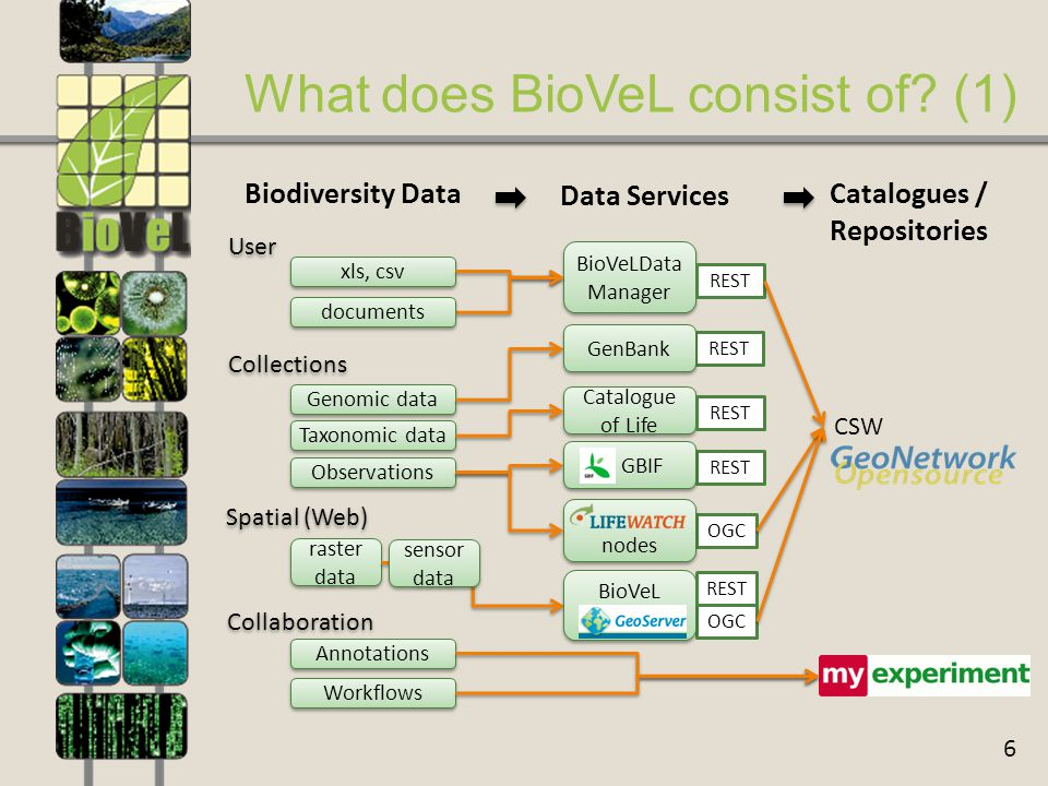 6 What does BioVeL consist of.