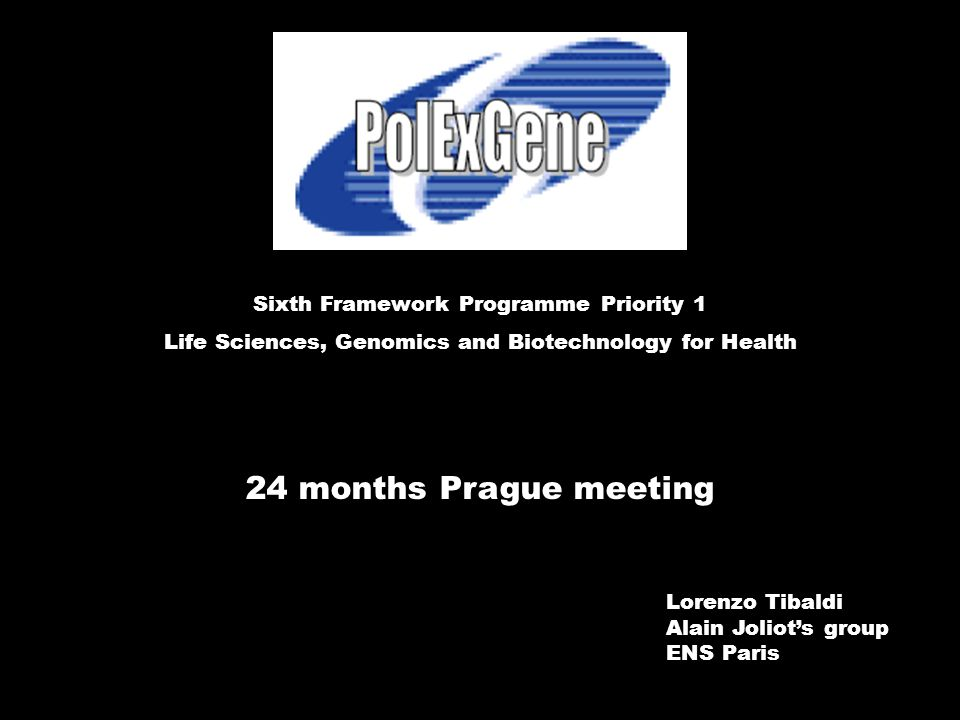 24 months Prague meeting Sixth Framework Programme Priority 1 Life Sciences, Genomics and Biotechnology for Health Lorenzo Tibaldi Alain Joliot's group ENS Paris