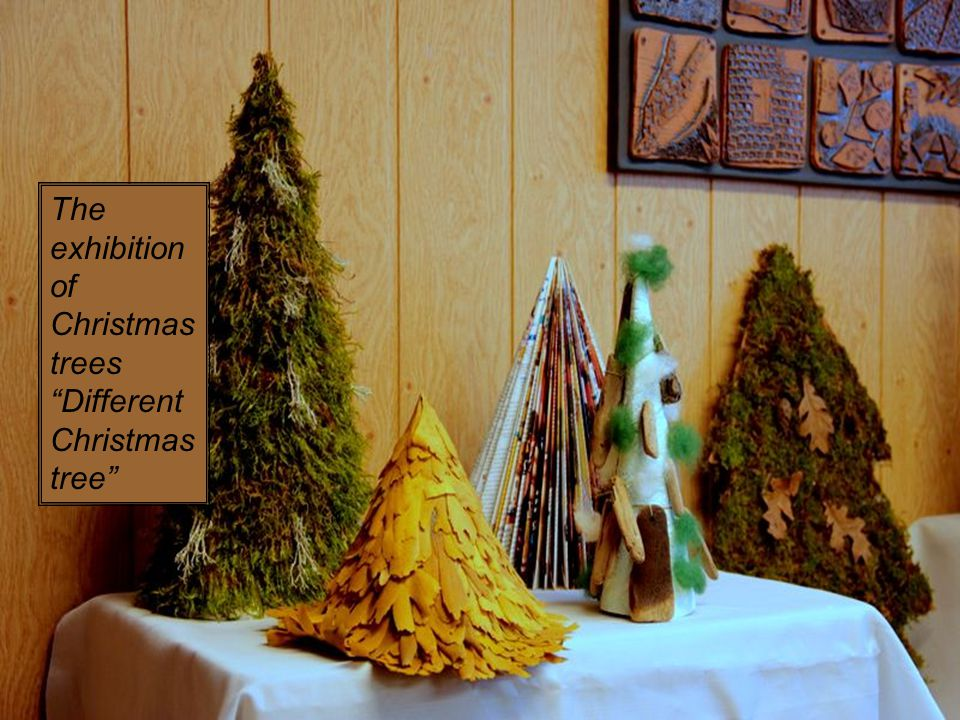 The exhibition of Christmas trees Different Christmas tree