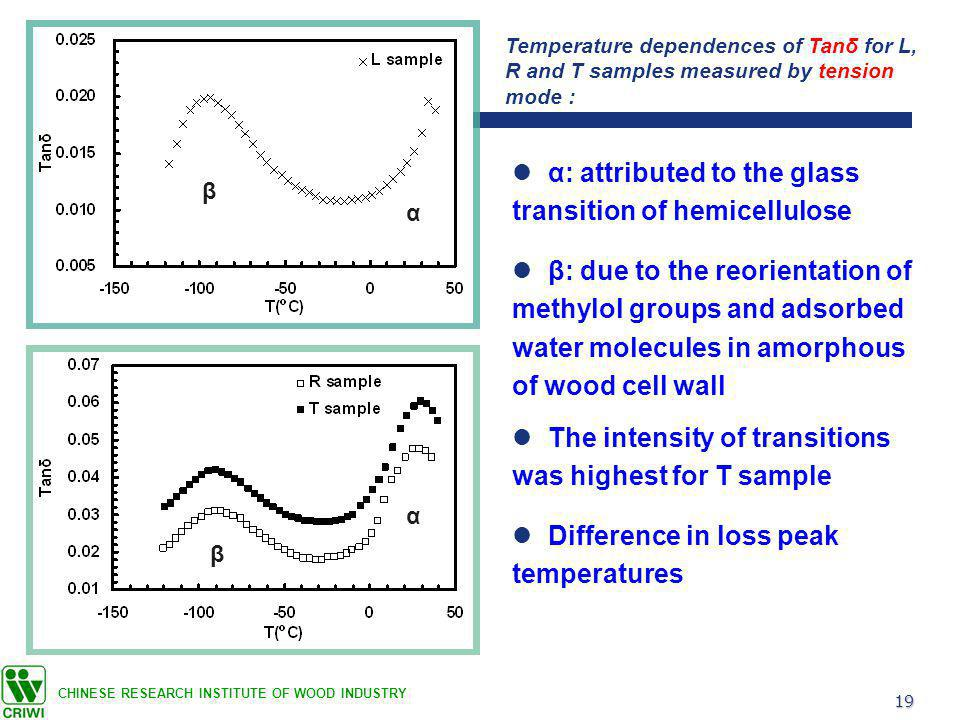 19 CHINESE RESEARCH INSTITUTE OF WOOD INDUSTRY α: attributed to the glass transition of hemicellulose Temperature dependences of Tanδ for L, R and T samples measured by tension mode : The intensity of transitions was highest for T sample β: due to the reorientation of methylol groups and adsorbed water molecules in amorphous of wood cell wall β α α β Difference in loss peak temperatures
