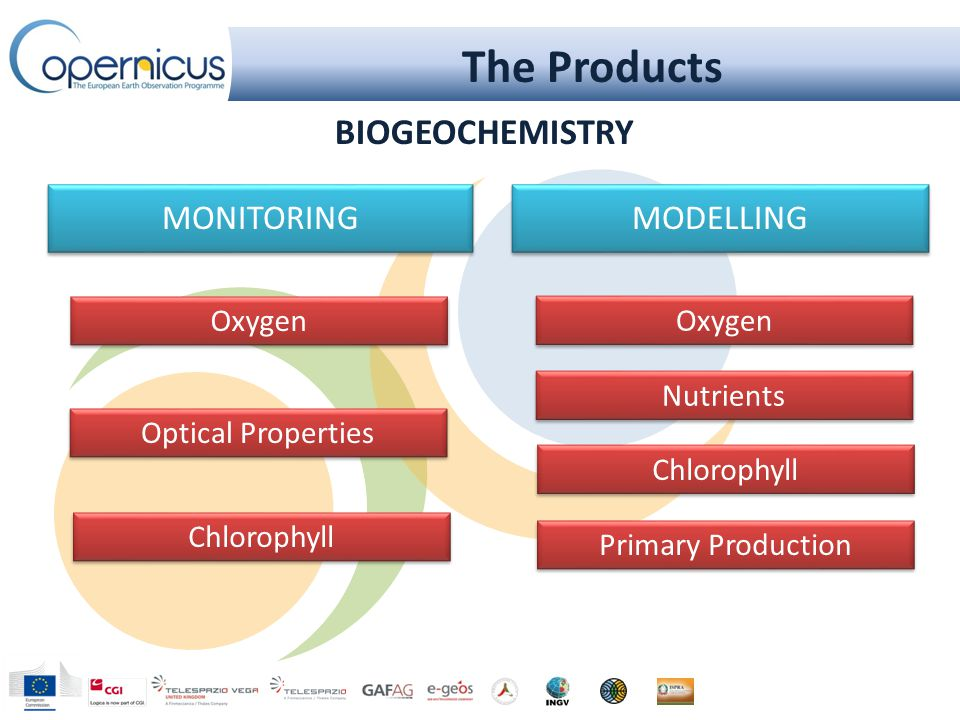 The Products MODELLING Chlorophyll Nutrients Oxygen MONITORING Primary Production Chlorophyll Oxygen Optical Properties BIOGEOCHEMISTRY