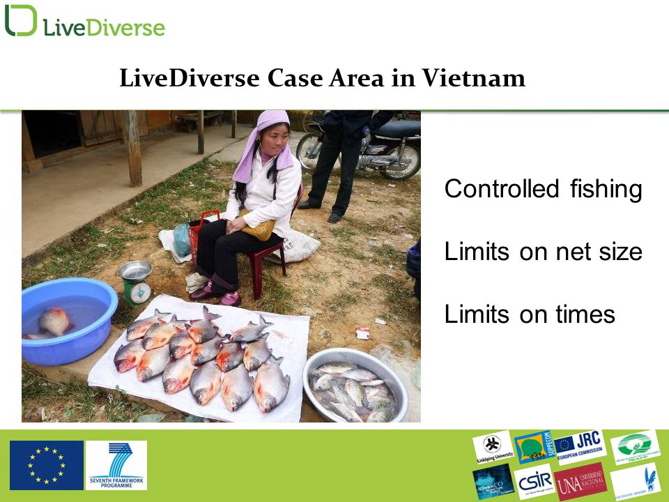L LiveDiverse Case Area in Vietnam Controlled fishing Limits on net size Limits on times
