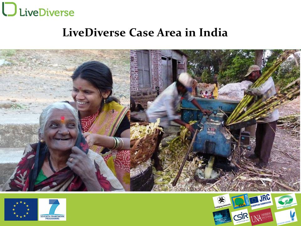 LiveDiverse Case Area in India