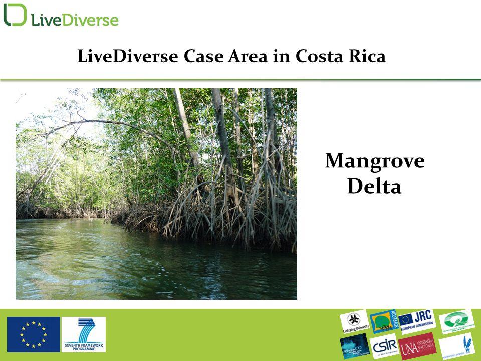 Mangrove Delta LiveDiverse Case Area in Costa Rica