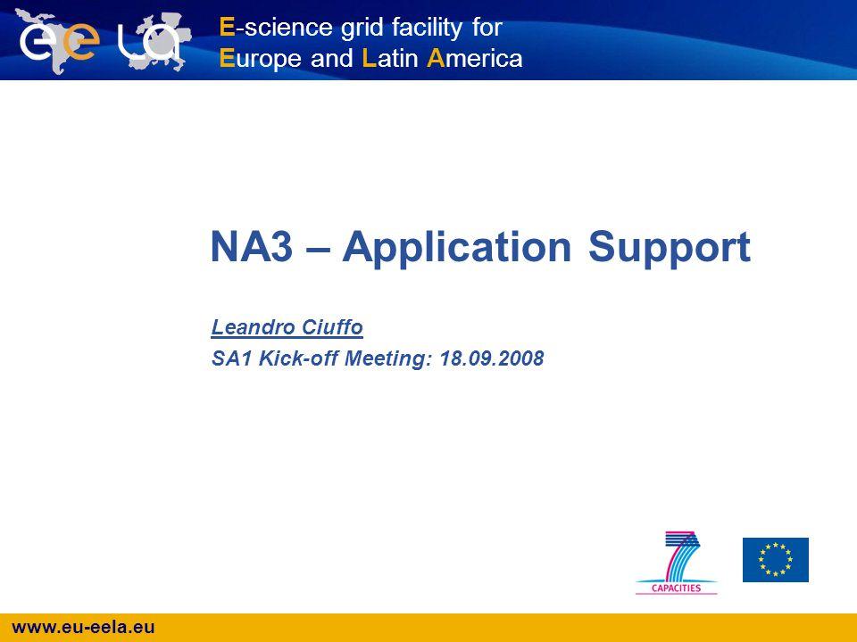www.eu-eela.eu E-science grid facility for Europe and Latin America NA3 – Application Support Leandro Ciuffo SA1 Kick-off Meeting: 18.09.2008