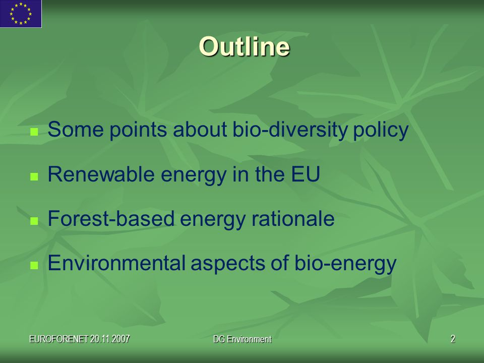 EUROFORENET 20.11.2007DG Environment2 Outline Some points about bio-diversity policy Renewable energy in the EU Forest-based energy rationale Environmental aspects of bio-energy