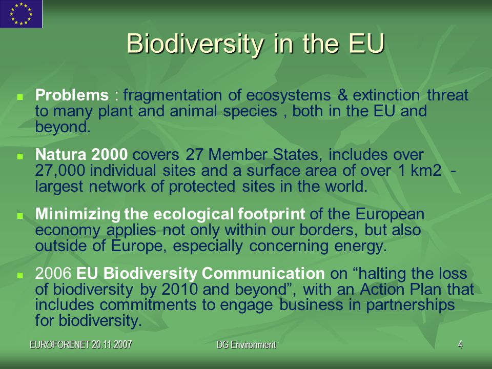 EUROFORENET 20.11.2007DG Environment15 In any case: Environmental safeguards are needed to avoid that the increase in bio-energy production results in additional environmental pressures on agricultural and forest land, which are a scarce resource in Europe.