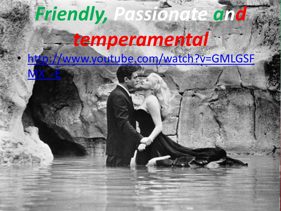 Friendly, Passionate and temperamental http://www.youtube.com/watch?v=GMLGSF MX_-E http://www.youtube.com/watch?v=GMLGSF MX_-E