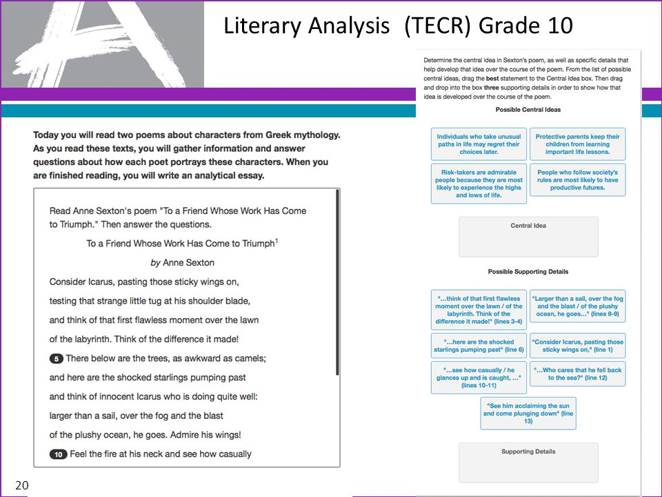 Literary Analysis (TECR) Grade 10 20