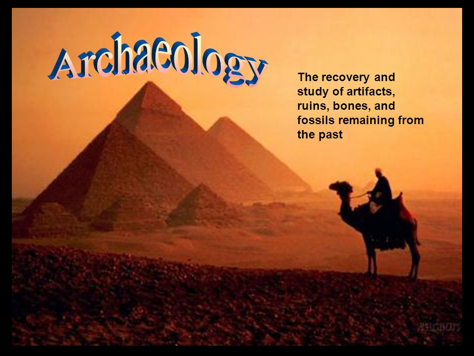 The recovery and study of artifacts, ruins, bones, and fossils remaining from the past