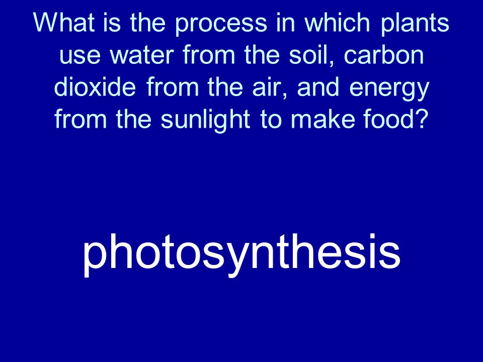 What is the process in which plants use water from the soil, carbon dioxide from the air, and energy from the sunlight to make food? photosynthesis