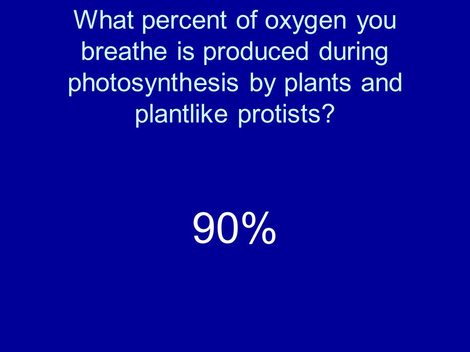 What percent of oxygen you breathe is produced during photosynthesis by plants and plantlike protists.