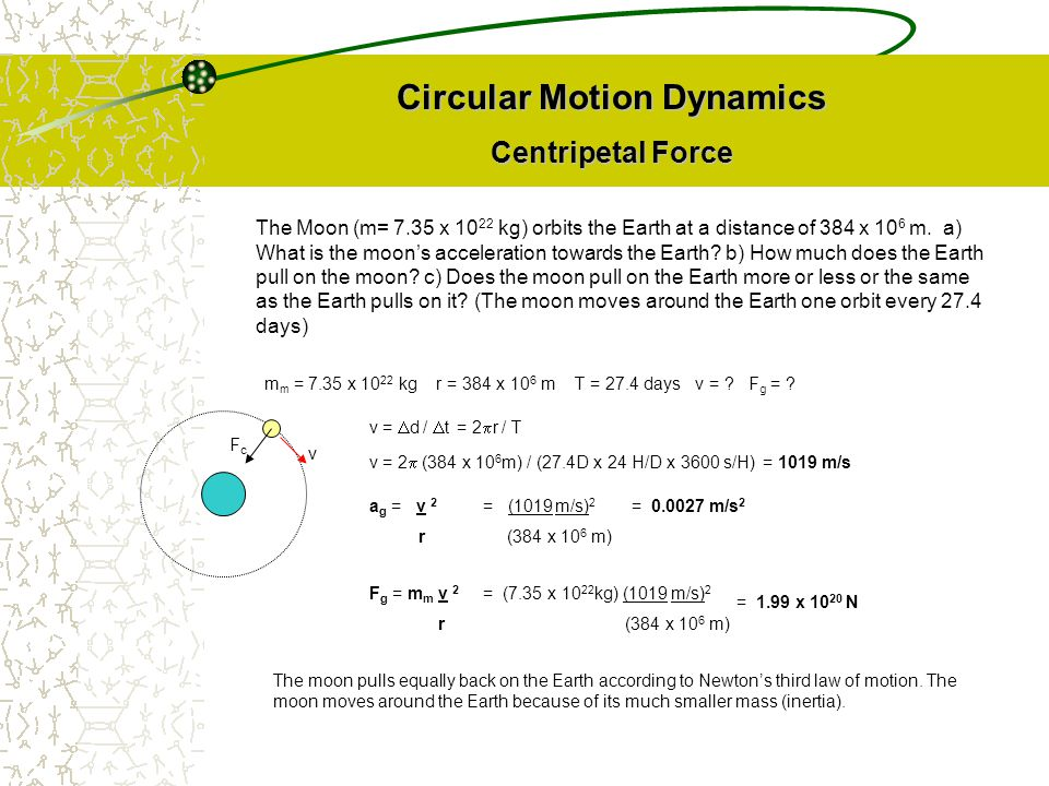 Circular Motion Dynamics Centripetal Force F g = m m v 2 r The Moon (m= 7.35 x 10 22 kg) orbits the Earth at a distance of 384 x 10 6 m. a) What is th
