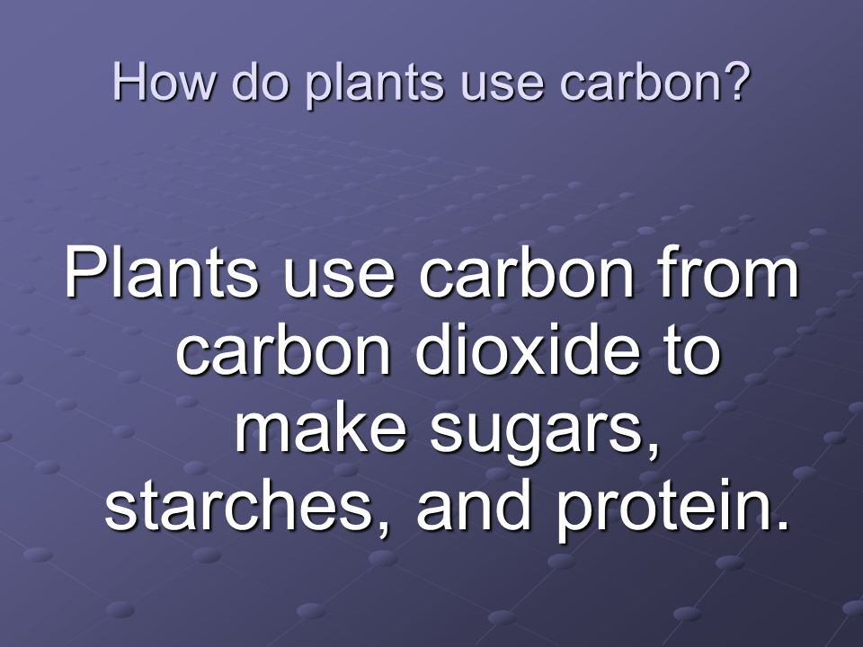How do plants use carbon? Plants use carbon from carbon dioxide to make sugars, starches, and protein.
