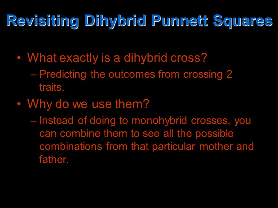 Revisiting Dihybrid Punnett Squares What exactly is a dihybrid cross.