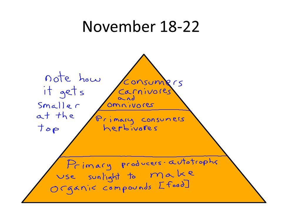 November 18-22