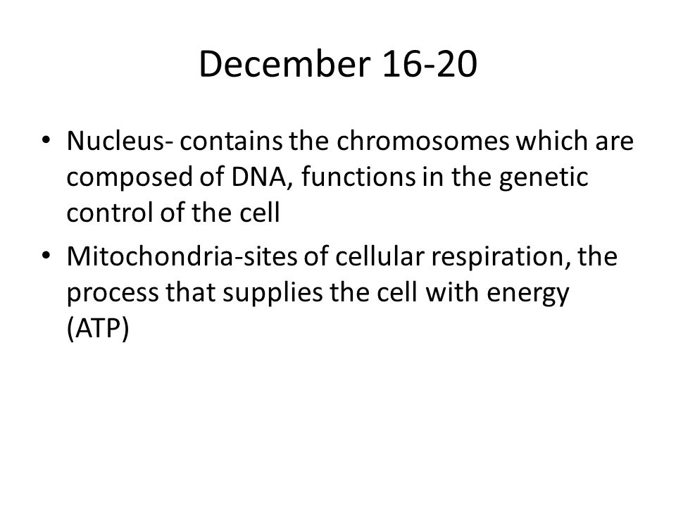 December 16-20 Nucleus- contains the chromosomes which are composed of DNA, functions in the genetic control of the cell Mitochondria-sites of cellular respiration, the process that supplies the cell with energy (ATP)